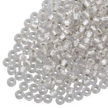 DQ Rocailles (4 mm) Centered Silver (25 Gram / 350 stuks)