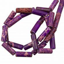 Regaliet Jaspis Kralen (14 x 4.5 mm) Purple (28 stuks)