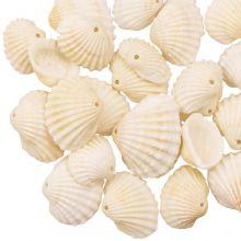 Schelp Bedel (10 - 13 x 14 - 18 x 6 mm) Creamy White (20 stuks)