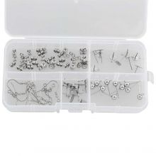 Voordeelpakket - Stainless Steel Oorstekers Box  (5 verschillende soorten) Antiek Zilver