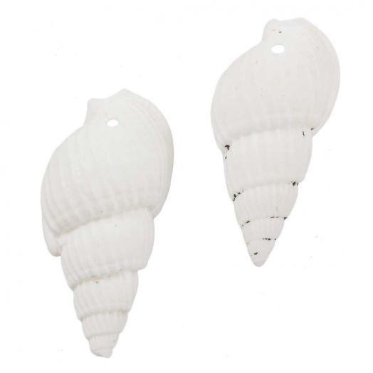 Hoorn Schelp Kralen (19 - 21 x 10 - 11 x 8 - 9 mm) White (75 Stuks)