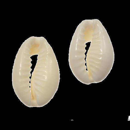 Kauri Schelp Kralen (12 - 18 mm) Seashell (60 Stuks)