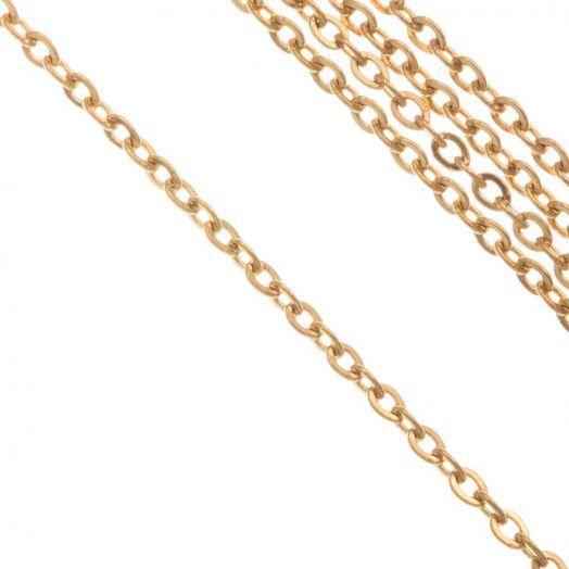 Stainless Steel Jasseron (2 x 1.5 x 0.4 mm) Goud (10 Meter)