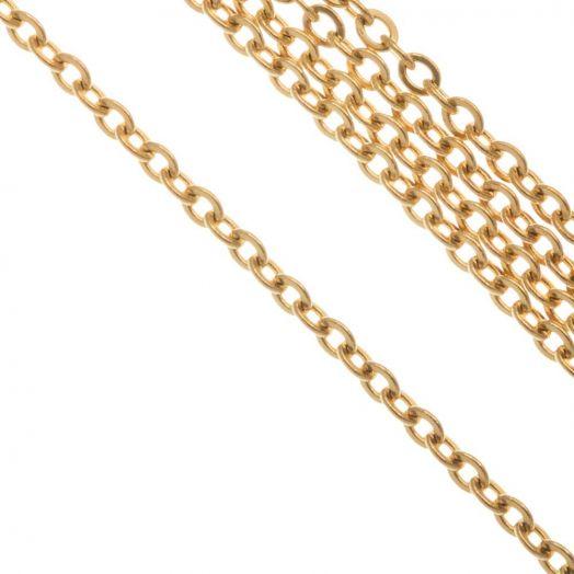 Stainless Steel Jasseron (2.5 x 2 x 0.5 mm) Goud (10 Meter)