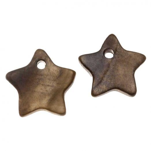 Schelp Bedel Ster (12 mm) Dark Brown (15 Stuks)