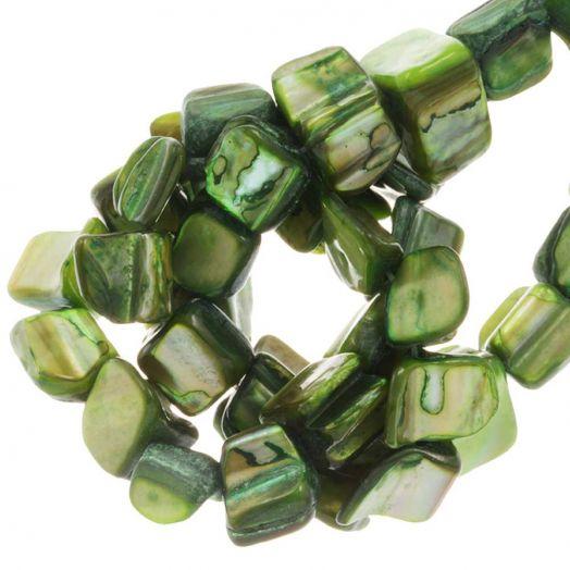 Schelp Kralen (8 x 8 mm) Green (48 Stuks)