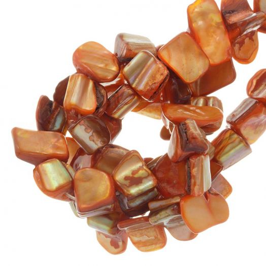 Schelp Kralen (8 x 8 mm) Orange (48 Stuks)