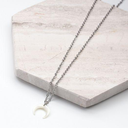Stainless Steel Ketting Met Hoorn Hanger White  (45 cm) Antiek Zilver (1 stuks)